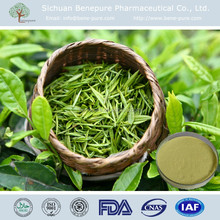 Factory supply Grreen tea extract Tea Polyphenols GTP 50%~98% USP/EP/CP/BP CAS No. 989-51-5 HPLC Green Tea Extract
