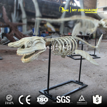 MY DINO-DSS012 Artificial Animal Skeleton Replica Statue