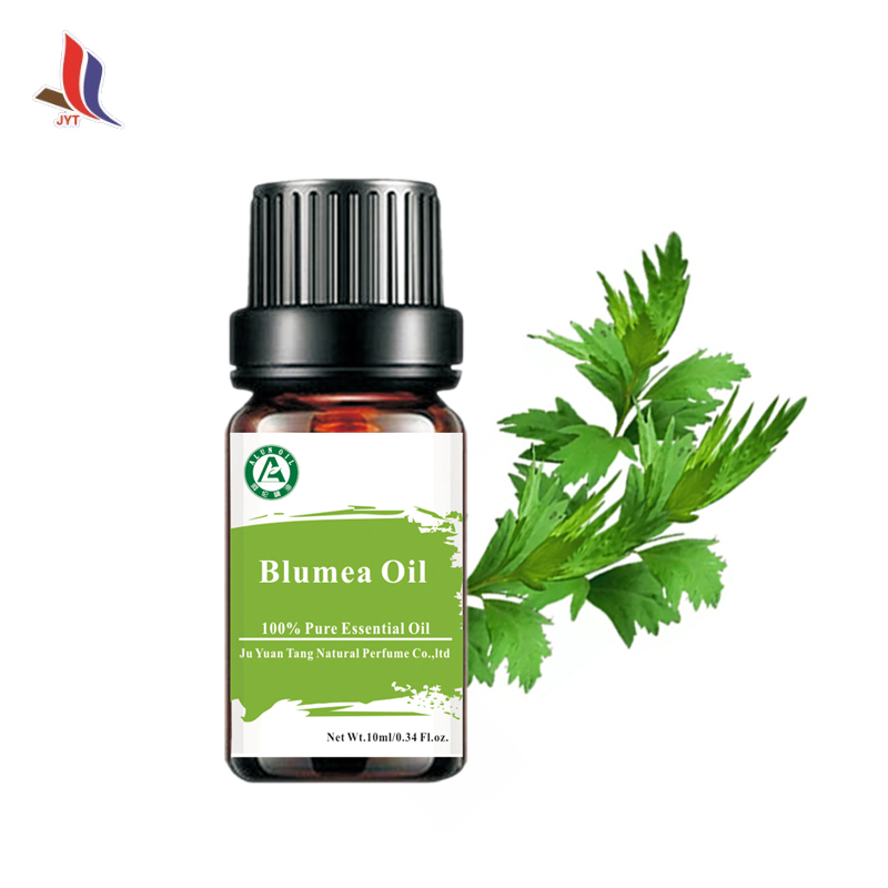 Therapeutic Tsao Essential Oil / Wormwood Oil / Blumea Essential Oils for Healthcare Moxa-moxibustion Therapeutic
