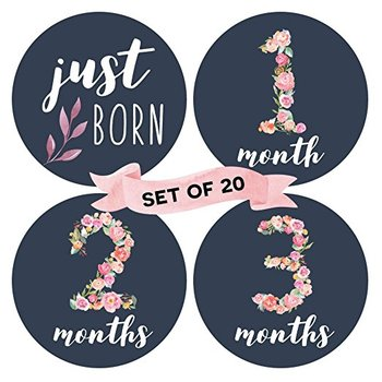 Factory Directly Supply Floral Baby Monthly Milestone Stickers (Set of 20) - Birth to 12 Months + 7 Bonus Achievement Stickers