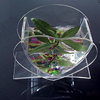 Heart Shaped Clear small acrylic fish tank for small fish