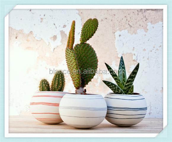 Colorido porcelana maceta maceta de color gris claro - Macetas de porcelana ...