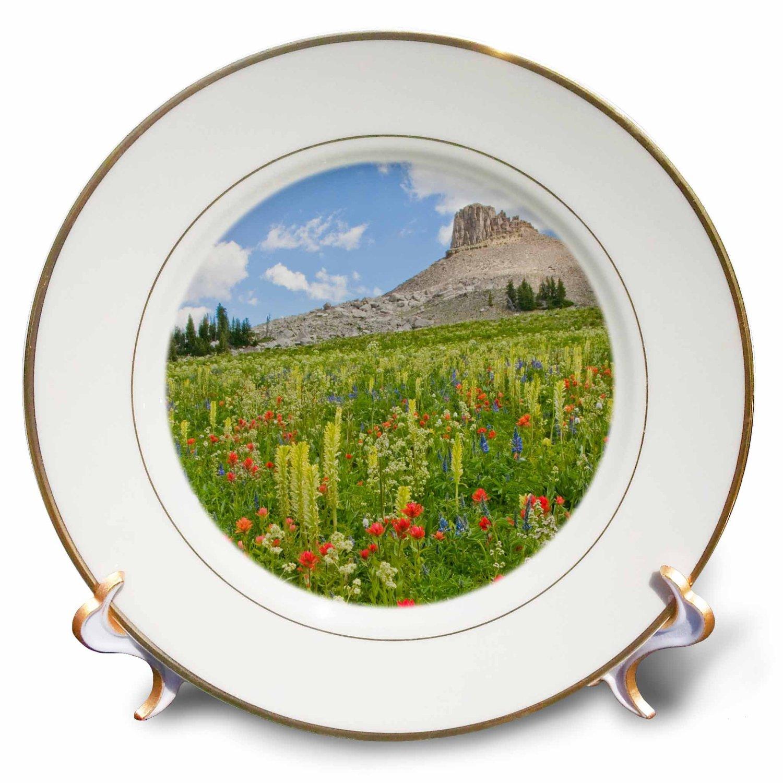 Danita Delimont - Wildflower - Wyoming, Grand Teton National Park, Spearhead Peak - 8 inch Porcelain Plate (cp_231867_1)