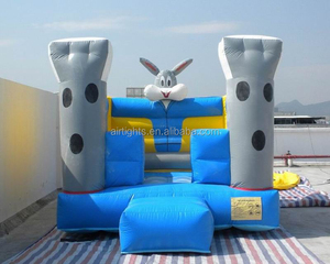 Crazy Fun Jumping Castle,Indoor or Outdoor Commercial Grade Bouncy Castle,0.55MM PVC Inflatable Bouncer for Sale