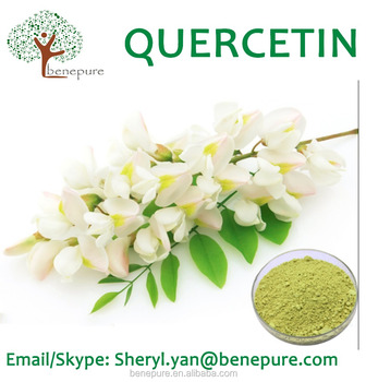 Natural Quercetin Dihydrate Anhydrous HBD from the buds of sophora japonica L 95% to 98% CAS 6151-25-3
