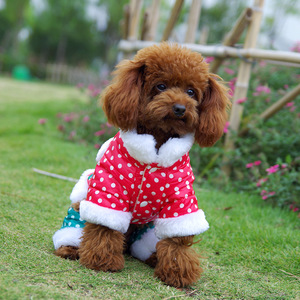 India Dog Clothes India Dog Clothes Suppliers And Manufacturers At