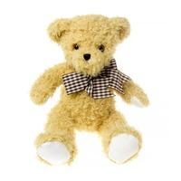 Popular OEM plush stuffed brown small teddy bear