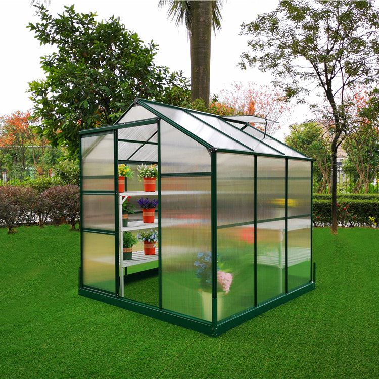 G-MORE Single Span Aluminum Frame PC Green House / Greenhouse for Sale