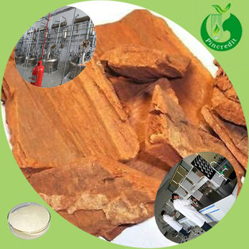 100% Natural Extract Powder For Man Enhancement Yohimbe Bark Extract