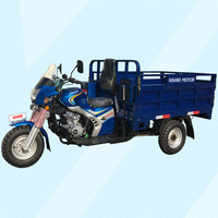 OEM Truck Trailer/CNG Auto Rickshaw/Electric Scooter/Motorized Tricycle China Factory