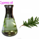 Y1107 Wholesale Competitive Price Pure Natural Cypress Oil