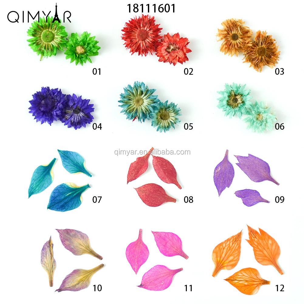 2018 Diy Nuevo Diseño De Dos Modelos De 6 Colores Flores Secas Para Arte De Uñas Decoración De Uñas Naturalesflores Secas Buy Flores Secas Para