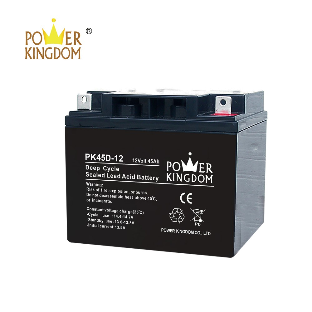 Power Kingdom sealed gel battery factory-2