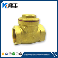 Alibaba Regulator Brass Globe Swing Check Valve With Counter Weight