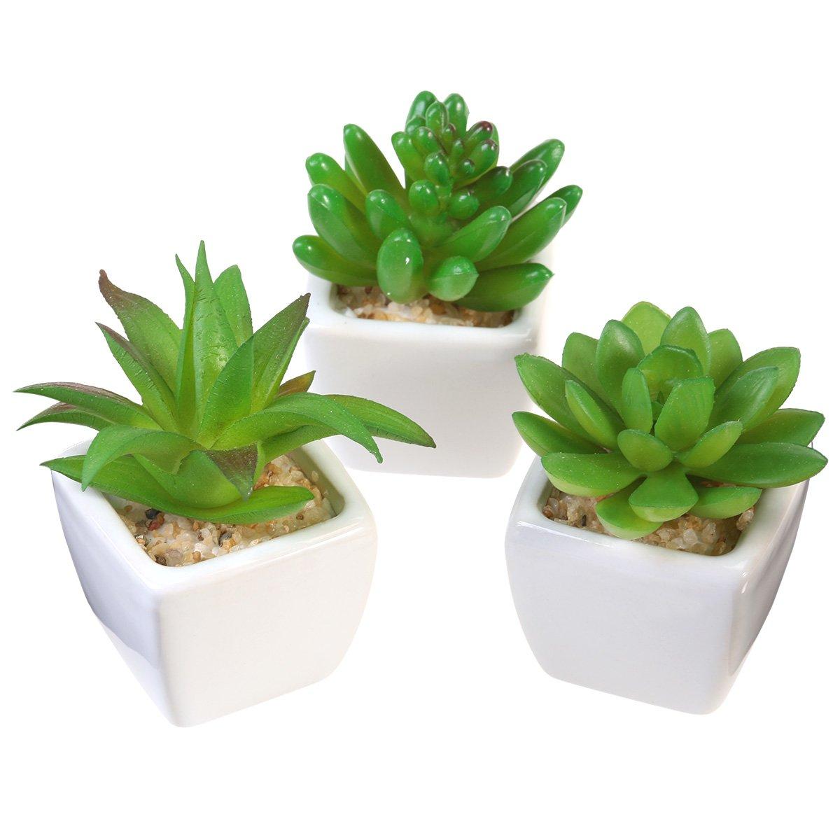 OUNONA 3pcs Mini Artificial Bonsai Succulent Plants with White Ceramic Planter Pots