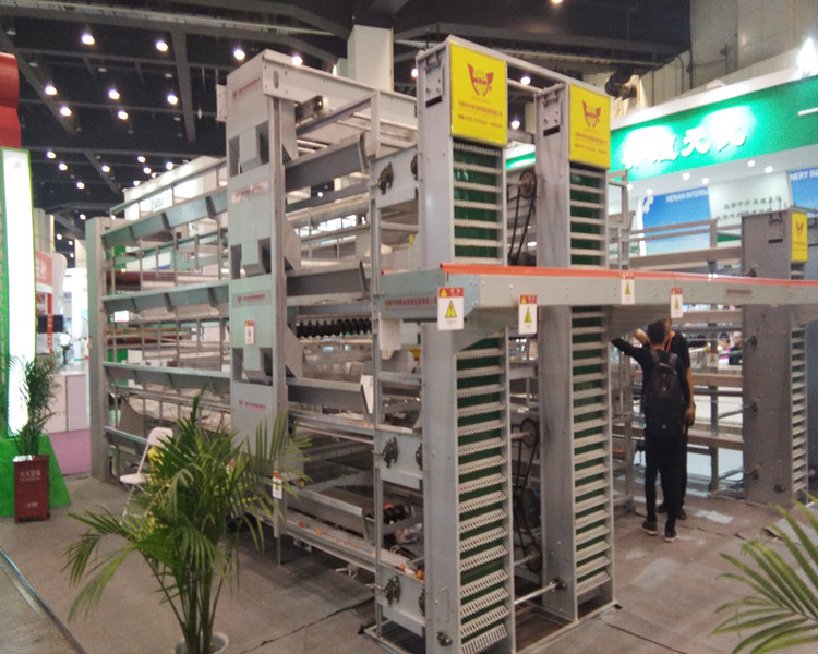 Poultry Equipment Broiler And Layer Chicken Cage  For Poultry Farm Chicken layer cage