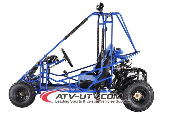 4x4 4x2 Eec Kids Off Road Go Karts,Mini Buggy,Buggy - Buy Gas Go ...