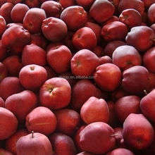 Red color and pome fruit products type red delicious apple