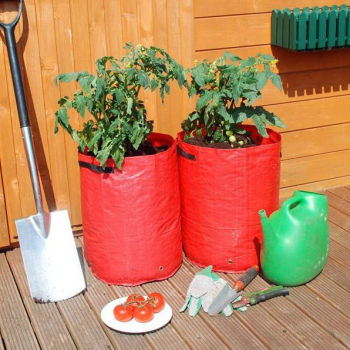 garden patio tomato growing bag tomato planter bags tomato. Black Bedroom Furniture Sets. Home Design Ideas