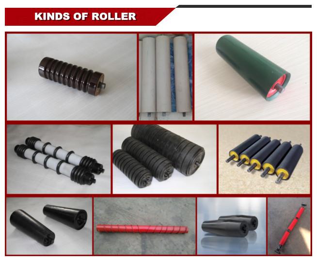kinds roller.jpg