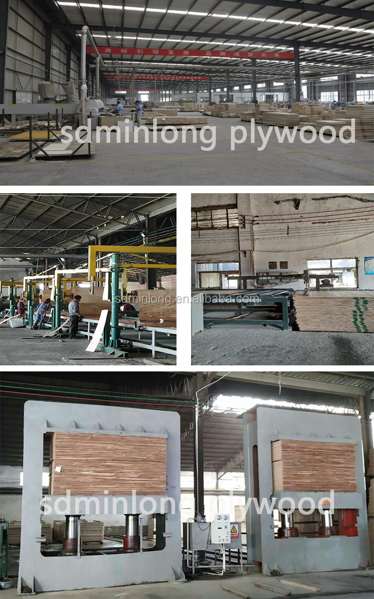 Film Faced Shuttering Plywood for Construction