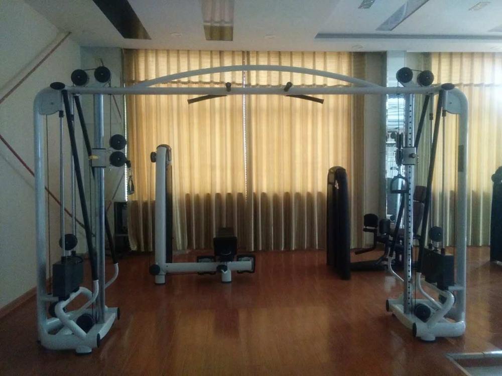 Dezhou Factory Building Machines Matrix Fitness Cable