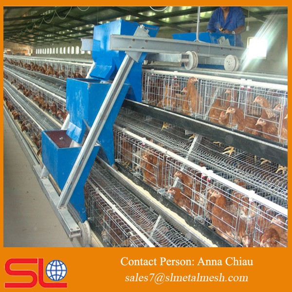 Layer Poultry Cages Egg Laying Cages Battery Cages For