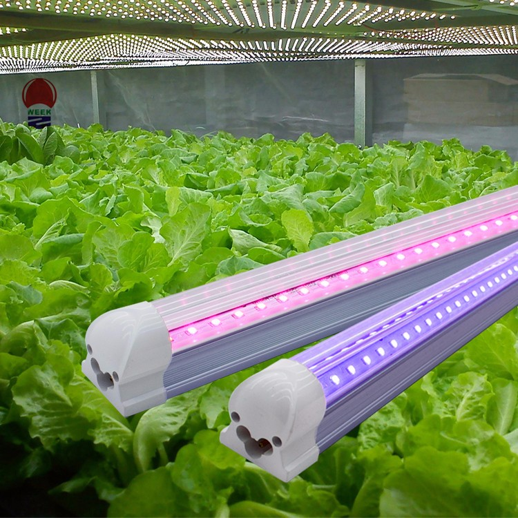 Dual Head 18W Dimmable timing clip led grow light for Indoor Plants Hydroponics Garden Home Office grow lighting