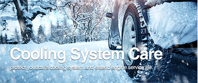 Cooling System Care