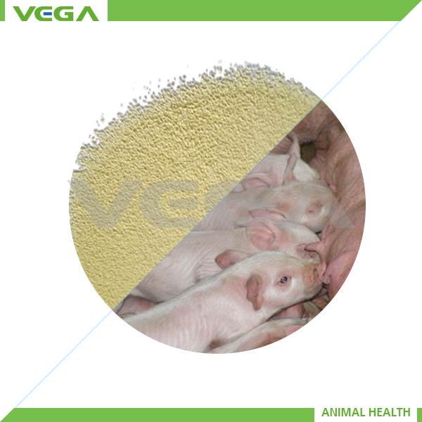 granule powder pig feed BMD animal medicine popular supplier on alibaba