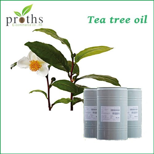 New arrival Australia tea tree oil in bulk