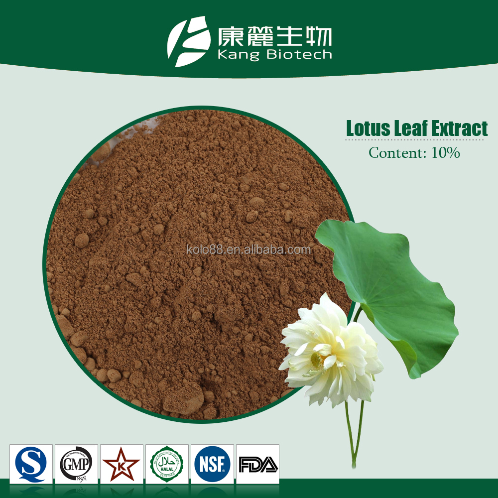chinese medicine bitter herb lotus leaf extract powder plant extract from lotus leaf