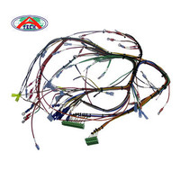 OEM Factory / Custom OEM automotive wire harness