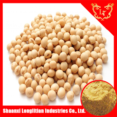 Soybean extract, Pure natural Soy Isoflavones powder with China ISO certificate