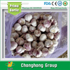 7.5kg/mesh bag garlic exporters china 2016