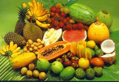 Shelf Stable Tropical Fruits Purees - Buy Fruits Purees Product on  Alibaba com