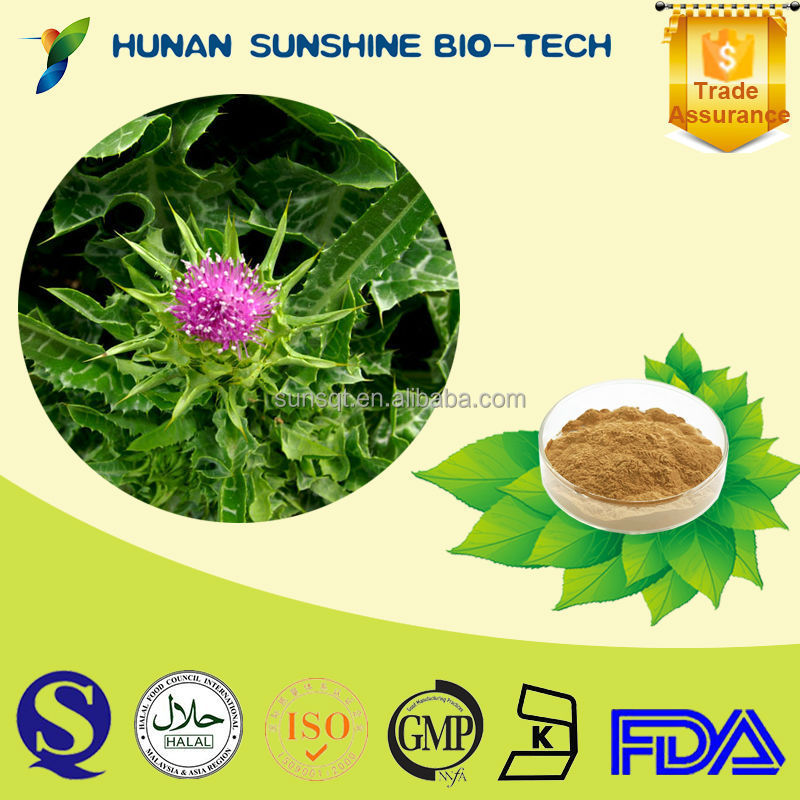 Silymarin 80% Milk Thistle Extract For Treatment The Death Cap Mushroom Poisoning