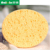 facial cleaning sponge compressed natural cellulose sponge