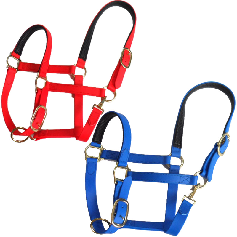 Paardensport Paard Product Halsters, PVC Paard Halter Hardware Met Messing Fittingen