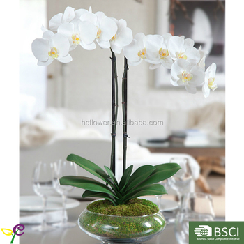Artificial Phalaenopsis Orchid With Glass Vase Arrangement Buy