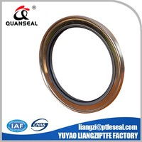 Lip Stainless Steel PTFE Rotary Shaft Oil Seals