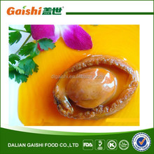 High Quality Frozen or Canned Abalone