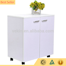 Popular Model Office Furniture Mobile Lens Storage Cabinet With 2 Doors
