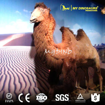 MY Dino AA-36 Best Quality Artifical Animal Camel