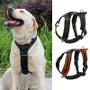 Berry S M L Reflective Nylon Strap Sport High-end Dog Chest Harness
