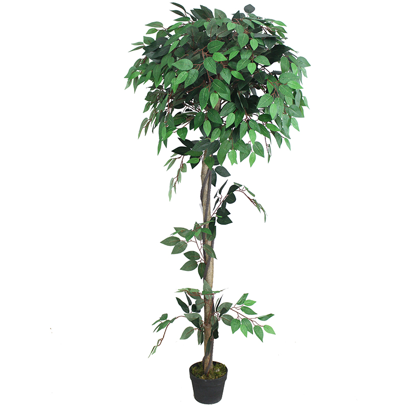 Ficus Artificiel Banian-180cm