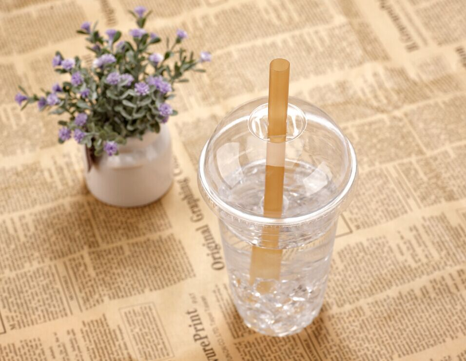 Drinking Straws Bar Accessories Type and FDA Certification PLA straw
