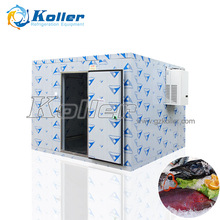 Koller Restaurant Commercial Cold Storage Cold Room,Walk In Refrigerator,Freezer Room VCR40