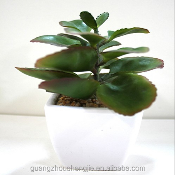 q081112 china wholesale nep mini bonsai kunstplanten vetplant