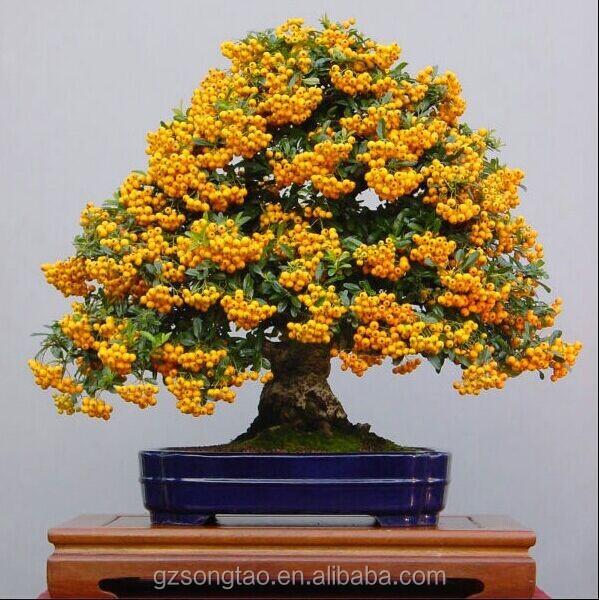 Comercio al por mayor naranja bonsai rbol artificial para for Arbol artificial decoracion